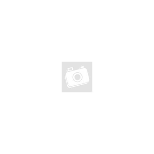 Elma S10H ultrahangos mosógép
